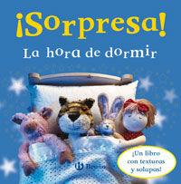 ¡Sorpresa! la hora de dormir : ¡un libro con texturas y solapas!